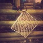 antivol-grille