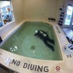 rebelle piscine