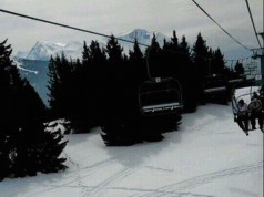 bite sur neige