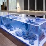cuisine aquarium