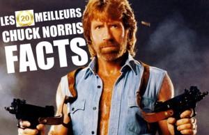 les meilleurs Chuck Norris facts