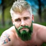 barbe verte